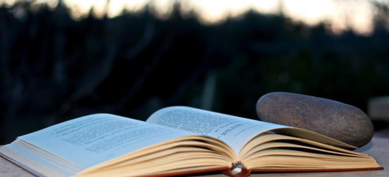 Lesung am 21.08. um 15 Uhr bei Quijote Kaffee in Rothenburgsort